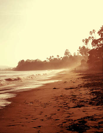 coastline: Beach Coastline