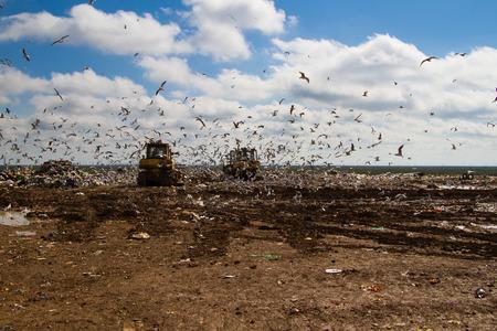 landfill site: bulldozer lavorano una discarica Archivio Fotografico
