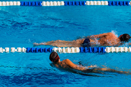 Swimming competition in the pool - Stock photos 免版税图像