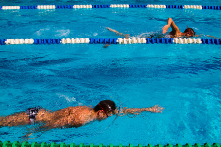 Swimming competition in the pool - Stock photos
