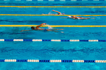 Swimming competition in the pool  Banque d'images
