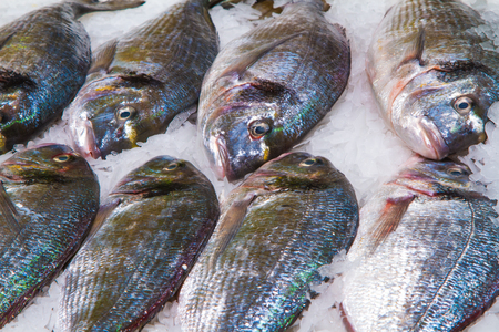 sparus: Gilthead (Sparus aurata) on ice decorated for sale at market