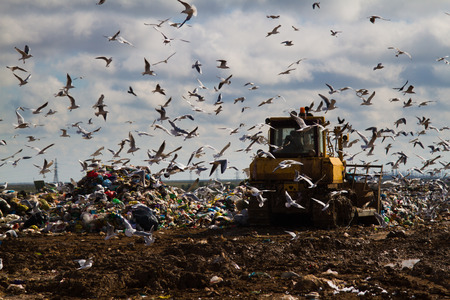 landfill: Shot of bulldozers working a landfill site