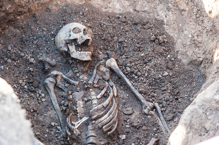 Skeleton soldier of the Second World War. Excavations