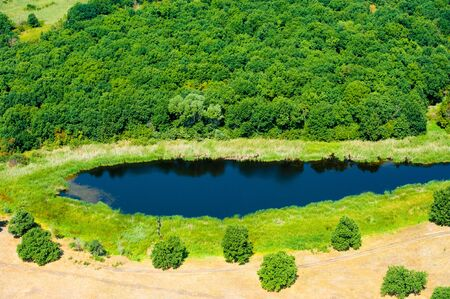 Aerial view of forest during a summer day Stok Fotoğraf