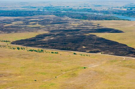 Scorched trees and grass after the fire. Aerial view. Landscape 免版税图像