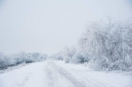 Paisaje de invierno. Camino de tierra en el bosque en invierno