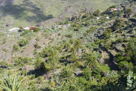 Houses on a hill near the musk gorge on the island of Tenerife. The concept of tourism and recreation.