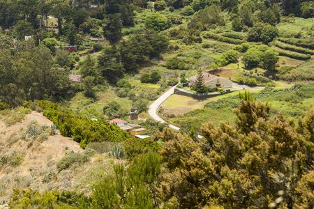 House on the field surrounded by trees top view. The countryside on the island of Tenerife on a summer day.