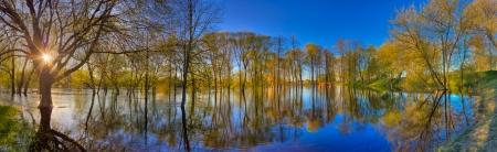 강 봄 숲 자연 조성 스톡 콘텐츠