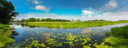 Wild Bog. Russian Nature Stock Photo - 18269883