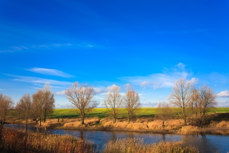Autumn landscape of river and trees and bushes Stock Photo - 19116124