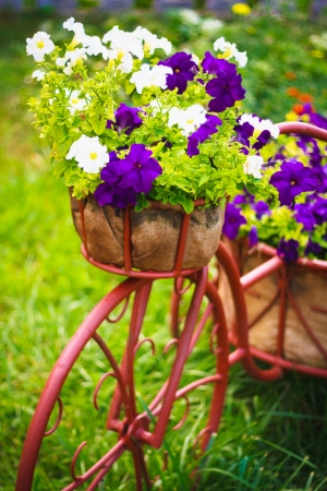Decorative Model Of An Old Bicycle Equipped With Basket Of Flowers.