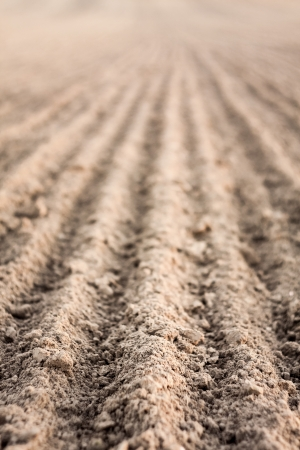 Background of newly plowed field ready for new crops. Ploughed field in autumn. Close focus farm, agricultural background