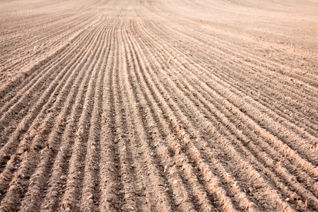 Background of newly plowed field ready for new crops. Ploughed field in autumn. Farm, agricultural background photo