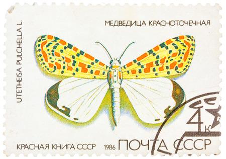 USSR - CIRCA 1986: A stamp printed in USSR, shows Butterfly Utetheisa pretty Utetheisa pulchella , from series Red Book USSR, circa 1986