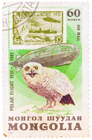 MONGOLIA - CIRCA 1981: A Stamp printed in MONGOLIA shows image of a snowy owl, from the series Polar flight 1931-1981, circa 1981