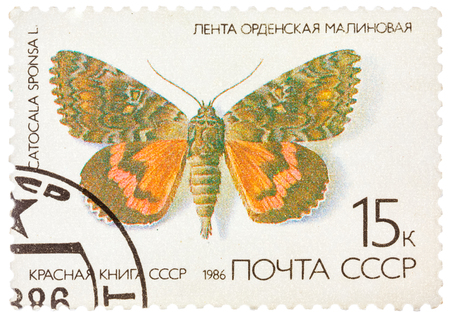 catocala: USSR - CIRCA 1986: A stamp printed in the USSR (Russia) shows a Butterfly with the inscription Catocala sponsa, from the series Red Book USSR, circa 1986