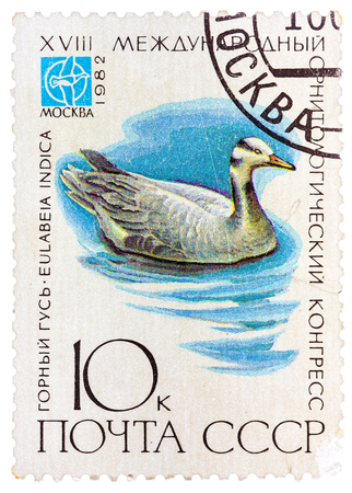 USSR - CIRCA 1982: A stamp printed in USSR (Russia) shows a bird Eulabeia indica with the inscription and name of series XVIII International Ornithological Congress, Moscow, 1982, circa 1982 Editorial