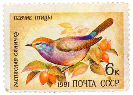 USSR - CIRCA 1981: stamp printed in USSR, shows Siberian Tit (Leptopoecile sophiae), series Song birds, circa 1981
