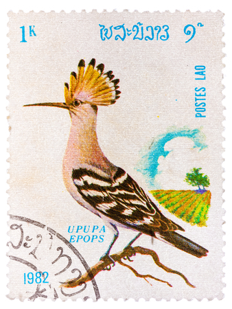 LAOS - CIRCA 1982: A stamp printed in LAOS shows Hoopoe (Upupa epops), from series Birds, circa 1982