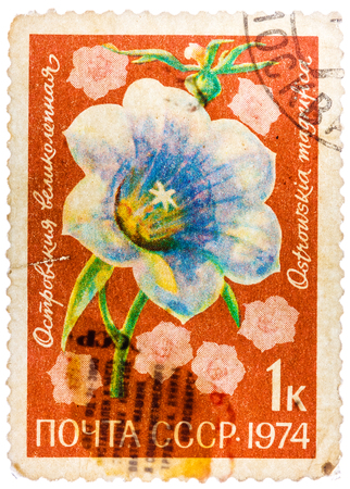 morning glory family: RUSSIA - CIRCA 1974: Morning glory is a common name for over 1,000 species of flowering plants in the family Convolvulaceae, circa 1974.