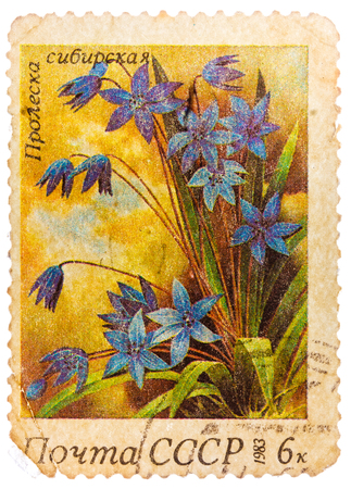 USSR - CIRCA 1983: A stamp printed in USSR (Russia) shows a Siberian squills with the inscription Scilla sibirica, from the series Spring Flowers, circa 1983