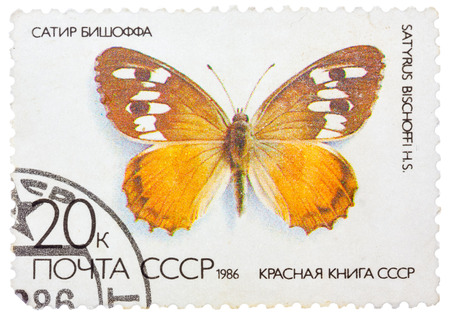 USSR - CIRCA 1986: A stamp printed in the USSR (Russia) shows a Butterfly with the inscription Satyrus bischoffi, from the series Red Book USSR, circa 1986