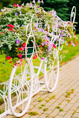 bike parking: Decorative Vintage Model Of Old Bicycle Equipped With Basket Of Flowers. Toned photo. White Bike Parking With Flower Bed In Summer Day