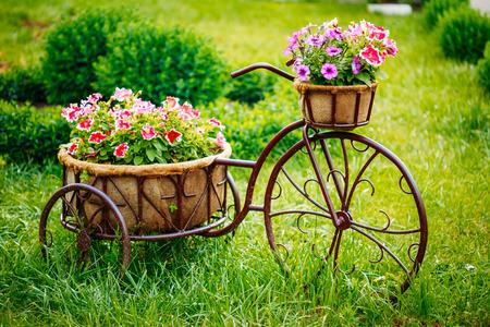 장식 빈티지 모형 오래된 자전거 장착 바구니 꽃 정원. 톤의 사진.
