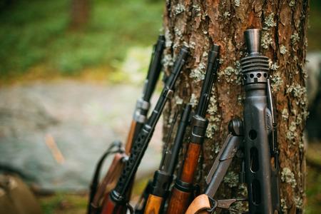 karabiner: Soviet and German rifles of World War II - SVT 40 - Samozaryadnaya Vintovka Tokareva,  Mauser Karabiner 98k and MG 42 Machine-gun leaning against trunk of pine