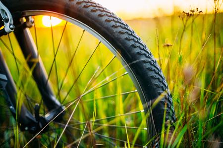 Roue de bicyclette dans le champ de prairie d'herbe verte d'été. Close Up Détail Banque d'images