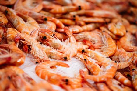 camaron: Cierre camarones crudos frescos en exhibición en el hielo en tienda de la tienda del mercado pescadores. Camarones - una parte importante de la cocina española.