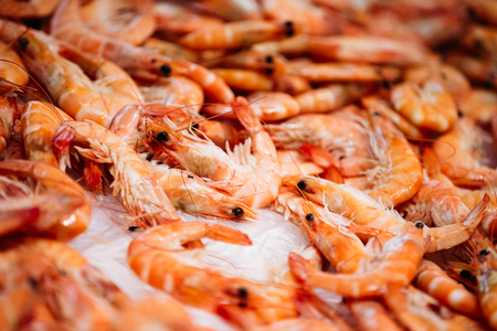 Close fresh raw shrimps on display on ice on fishermen market store shop. Shrimps - an important part of Spanish cuisine.