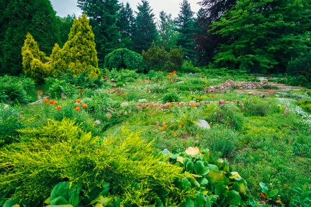 flowerbed: Flowerbed, Small Green Trees And Cuted Bushes In Garden. Beautiful Summer Park. Landscaping. Garden Design