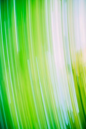 green lines: Light Abstract Natural Green Lines Motions Background.