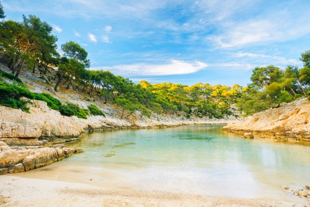 azure coast: Beautiful nature of Calanques on the azure coast of France. Coast De Port Pin near Cassis in South France. Bay, pine forest and sunny blue sky. Stock Photo