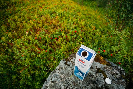 tine: Aurland, Norway - August 2, 2014: Package curdled milk Kulturmjolk or sour from Tine stands on a rock in the Norwegian mountains. TINE SA is the largest Norwegian dairy product cooperative consisting of around 15,000 farmers and 5,600 employees