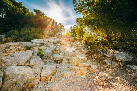 azure coast: Sunrise over beautiful nature of Calanques on the azure coast of France. High bright cliffs in sunlight under blue sunny sky. Sunset over rocky path, way Stock Photo
