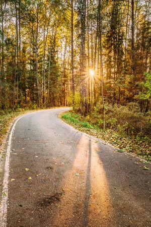 the rising sun: Sinuoso camino de la carretera de asfalto calzada a través del bosque de otoño. Atardecer Amanecer. Nadie. Carretera gira a la creciente sol.