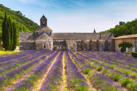 vaucluse: Ancient monastery Abbey Notre-Dame de Senanque in Vaucluse, France.