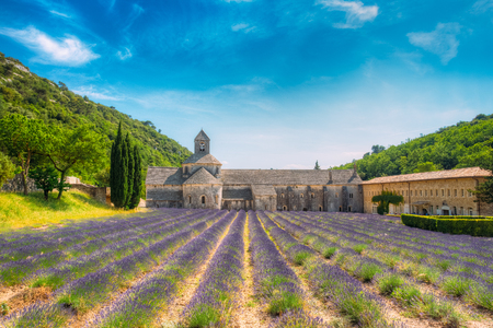 vaucluse: Beautiful landscape lavender field and an ancient monastery abbey Abbaye Notre-Dame de Senanque in Vaucluse, France Stock Photo