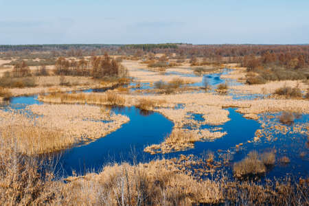 dry grass: Panorama of Spills Of River In Spring Season In Belarus. Sunny Spring Day. Belarusian Beautiful Landscape. Dry grass