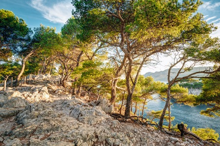 azure coast: Beautiful nature of Calanques on the azure coast of France. Calanques - a deep bay surrounded by high cliffs. Stock Photo