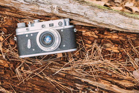 rangefinder: 35mm Vintage Old Retro Rangefinder Camera On Old Fallen Wood Tree In Forest.