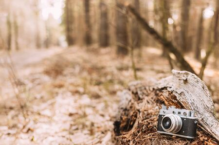 rangefinder: 35mm Vintage Old Retro Small-Format Rangefinder Camera On Old Fallen Wood Tree In Forest.