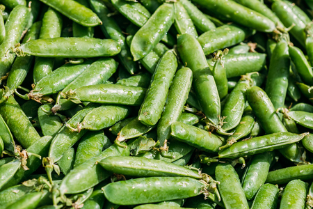 ejotes: Fresh Vegetable Organic Green Beans Background. Local Food Market