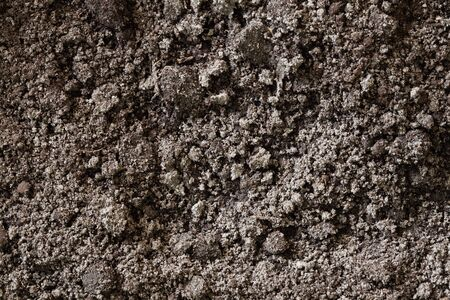 dirt background: Black Soil Dirt Background Texture, Natural Pattern. Flat Top View
