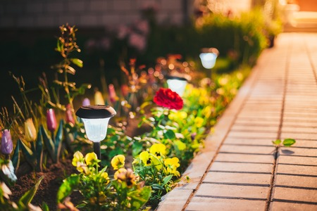 Decorative Small Solar Garden Light, Lanterns In Flower Bed In Green Foliage. Garden Design. Solar Powered Lamps In Row Archivio Fotografico