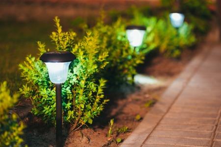 Decorative Small Solar Garden Light, Lanterns In Flower Bed In Green Foliage. Garden Design. Solar Powered Lamps In Row Stock Photo